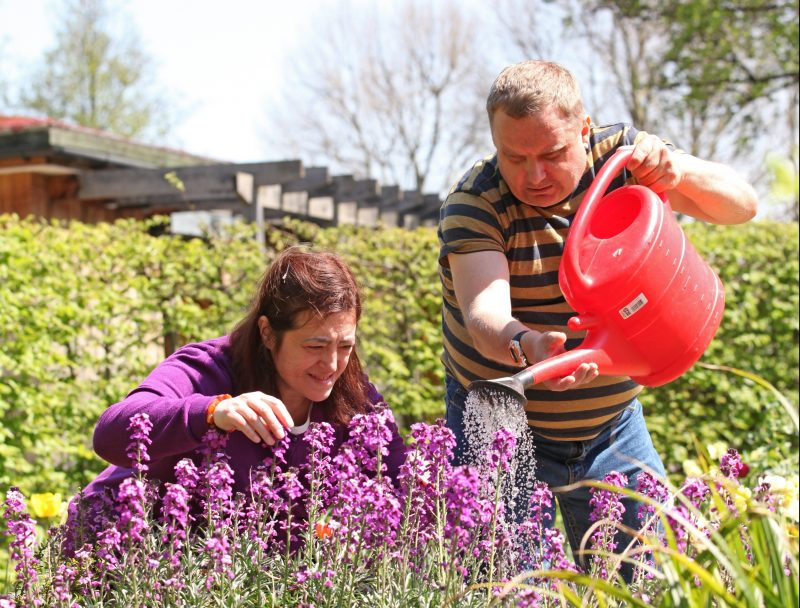 Man in striped t-shirt waters plants with a red watering can with lady in purple jumper tending to some plants