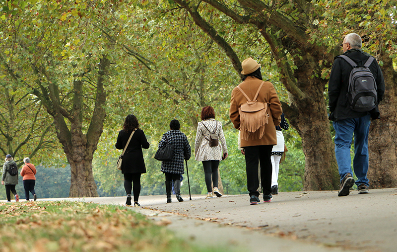 Group of people walking in an autumnal wooded park